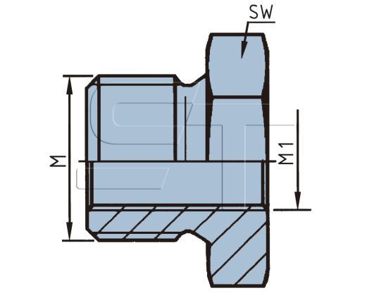 Reduzierung M22 x 1,5 auf M12 x 1,5 mit O-Ring