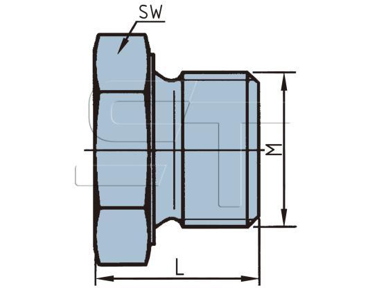 Verschlußschraube M22 x1,5