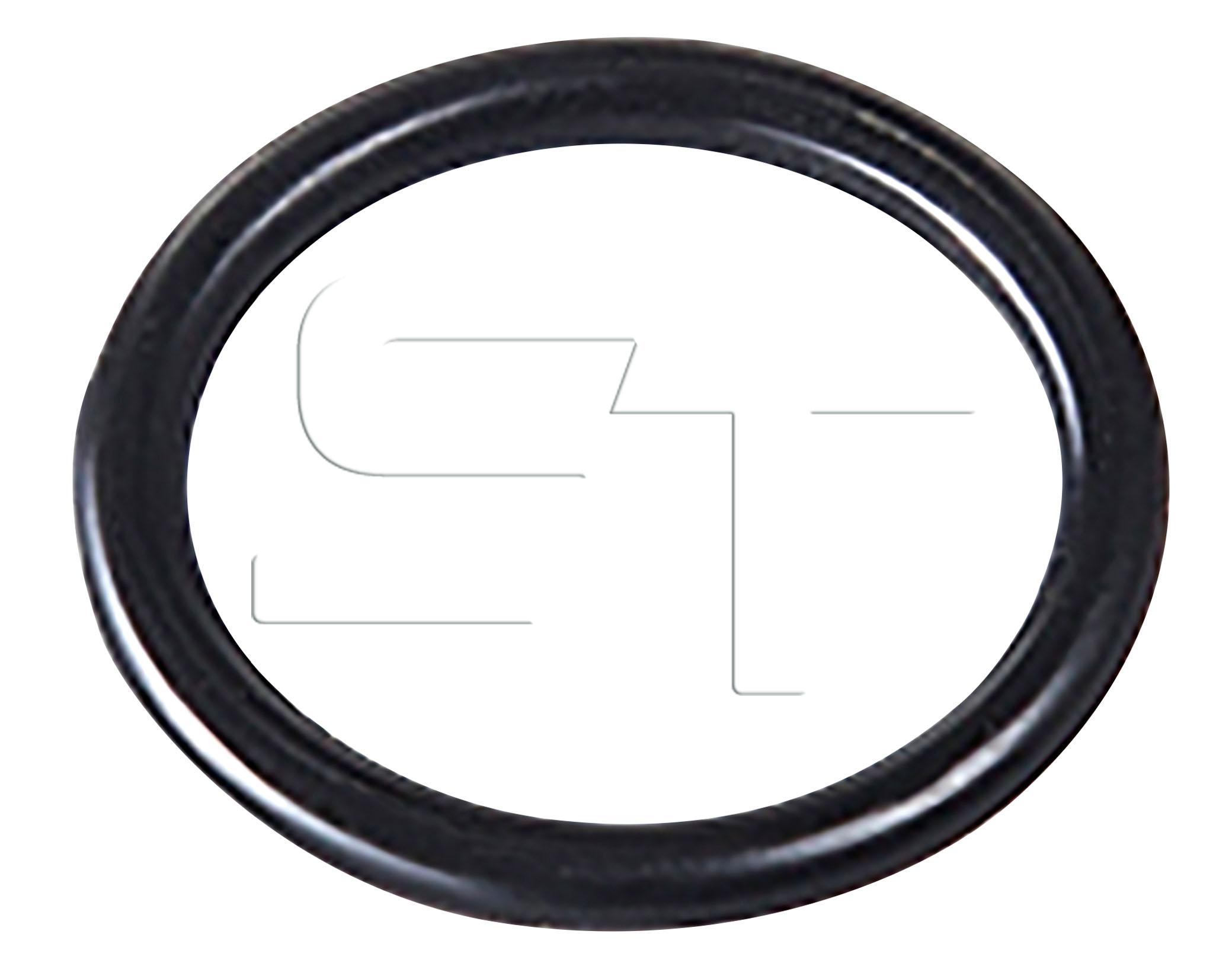 O- Ring 13 x 1,0 VPE 100 Stück